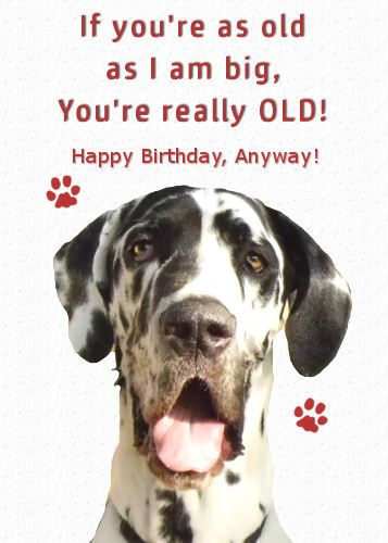 Pin By Kimberly Jackson On Dragonfire Graphics Ecard Greetings To Share Cute Love Quotes Love Quotes For Her Great Dane