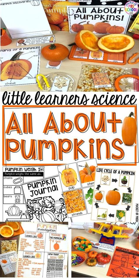 Pumpkin science center for Fall or Halloween with printables, vocabulary cards, anchor charts, science journal pages, read aloud, anchor charts, and a family note. For preschool, pre-k, and kindergarten. #science #preschool #prek