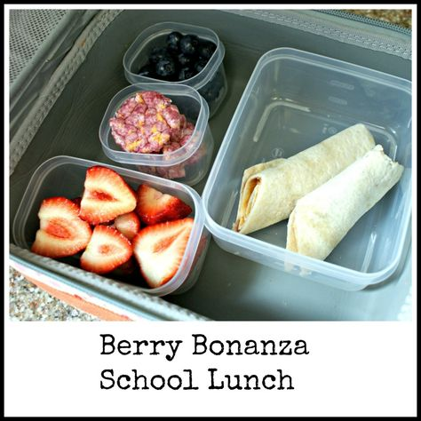 Berry Bonanza Lunch - fresh fruit and rice cakes with a PB wrap