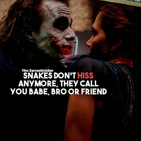 Snakes Don't Hiss Anymore Nowadays they call Us Babe, Bro Or Friend.... Need Some Daily Dose Of Motivation Follow👉@the.sarcasticjoker… #harleyquinnquotessayings