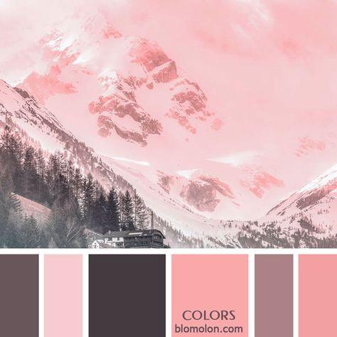 Variedad y mucho color para tus diseños con la entrega número 14 en paletas de colores del mes de junio, especialmente para esta temporada...#paletasdecolores #moodboards #color