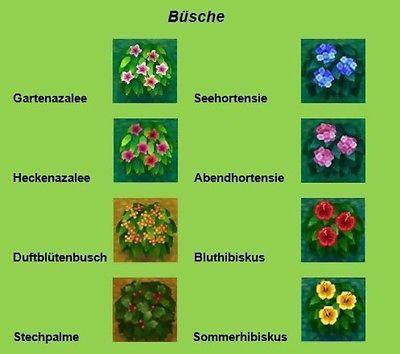 Image Result For Acnl Busche Azaleen Hibiskus Stechpalme