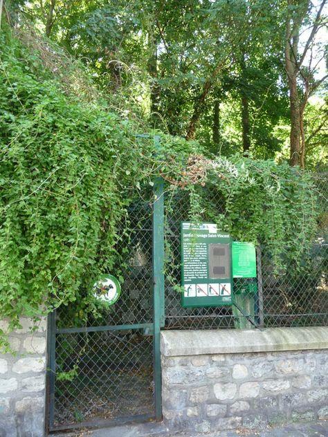 Visite Exceptionnelle Du Jardin Sauvage Saint Vincent Paris 18e