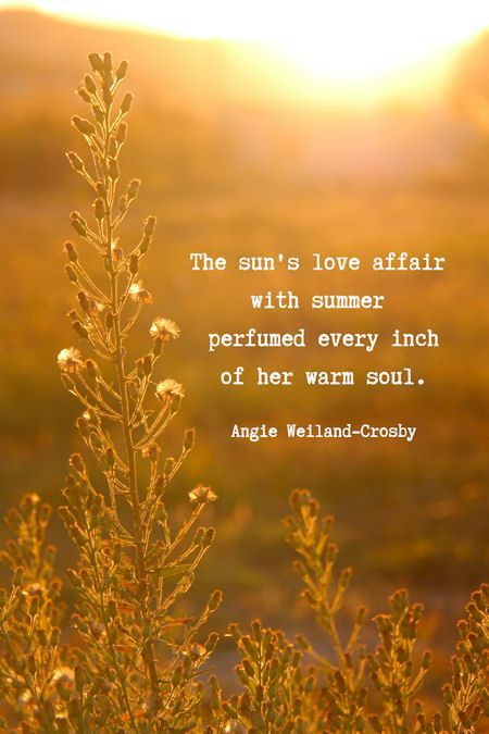 Summer Beach Quotes With A Splash Of Soul Summer Love Quotes Summer Beach Quotes Summer Quotes