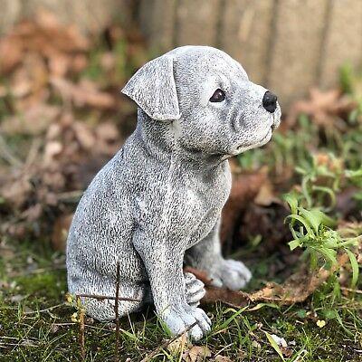 Details Zu Steinfigur Staffordshire Terrier Welpe Frostfest