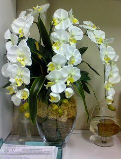 Flores D K Plantas Flores Permanentes Com Imagens Vasos De