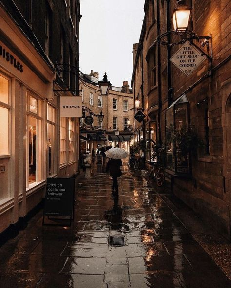 rainy aesthetic town / vintage architecture / cute city / cafe / comment for credit! Cozy Aesthetic, Brown Aesthetic, Autumn Aesthetic, Travel Aesthetic, Places To Travel, Places To Go, Aesthetic Pictures, Aesthetic Wallpapers, Light In The Dark