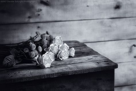 fiori Davide Solurghi Photography -...