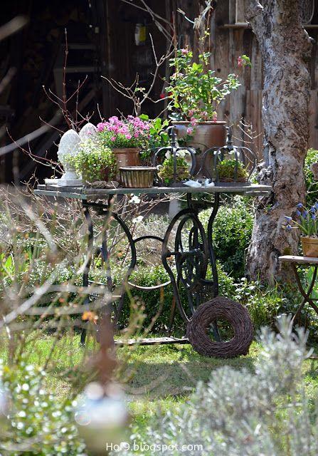Rosa Fr�hling im Garten