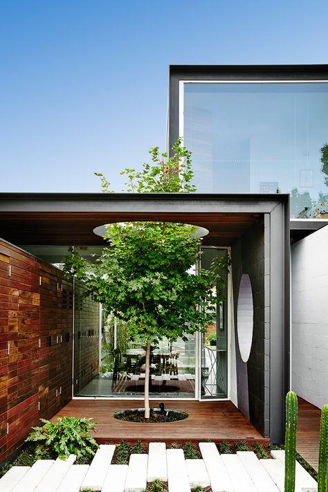 Maison Conteneur De Design Moderne Avec Arbre Intégré à La Terrasse De  Jardin En Bois