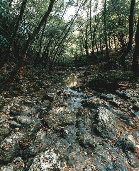 Mi affascinano sempre corsi d'acqua cascate e fiumi in questo caso avevo davanti un piccolissimo ruscello quasi in secca ho deciso di fare una lunga esposizione per creare uno specchio che potesse riflettere gli alberi dando un po' più di importanza alle rocce che avevo davanti mettendole in primo piano. Se anche tu come me ami fotografare l'acqua ti suggerisco di leggere la mia guida ti basta seguire il link in bio.    . #comefotografare #fotografarel'acqua #fotografiadipaesaggio #paesaggio #fo