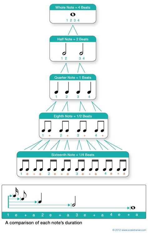 Values & Rests Musical Rhythm note values.will definitely print and post in my classroom!Musical Rhythm note values.will definitely print and post in my classroom! Music Chords, Violin Sheet Music, Piano Music, Music Music, Music Happy, Piano Keys, Piano Lessons, Music Lessons, Music Education Lessons