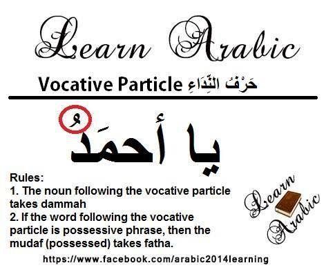 Learning Arabic Msa Fabiennem Learn Arabic Language Arabic Lessons Learning Arabic