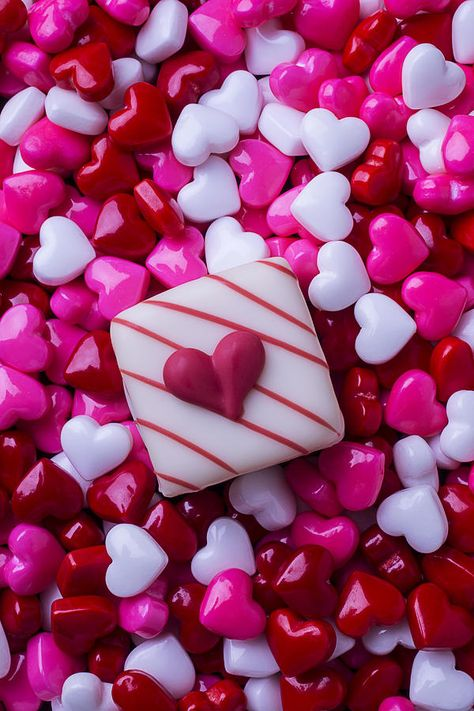 So Many Candy Hearts Photograph by Garry Gay