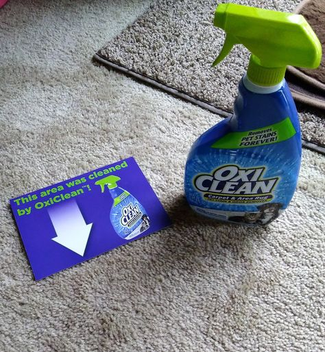 Freesample Say Goodbye To Your Tough Carpet Stains With