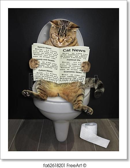 Free Art Print Of Cat With A Newspaper On The Toilet Cute Cats