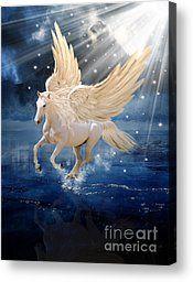 Pegasus Babette Van den Berg