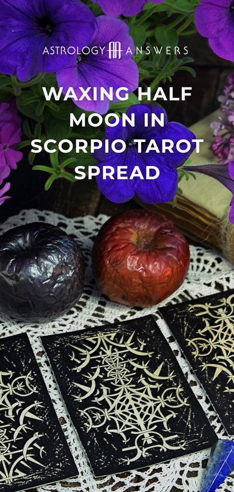 Let's harness the passing lunar energies of the Waxing Half Moon in Scorpio with this Tarot spread! #tarot #tarotspreads #waxingmoon #moontarot #scorpiomoon #scorpiotarot
