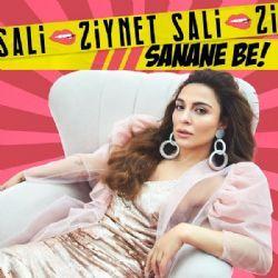 Ziynet Sali Sanane Be Sarkisini Beklemeden Indir Dur Songs Album Remix