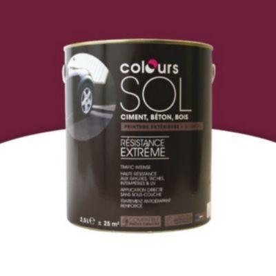 Peinture Sol Colours Premium Rouge Cardinal Satin 2 5l En 2020 Peinture Sol Sol Rouge Et Peinture Exterieure