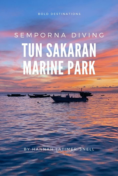 #Borneo is filled with fabulous dive sites. The best, however is the #TunSakaranMarinePark .   Learn about where and how to go diving in this spectacular locations and more!    #scubadiving #ScubaJunkie #mabul #sipidan #spectaculardiving #bestdivesites #sempornaislands #sempornaborneo #divinginsabah #divinginborneo #divinginsemporna #diving #girlsthatscuba #womenwhodive #sheisnotlost #womenexplorers #sabahborneo #sabah #femaledivers #femalescubadivers #amazingdiving #obsessedwithscuba #scuba