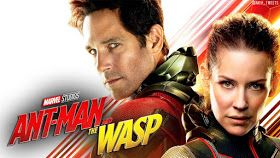 Ant Man and the Wasp HD Wallpapers Download 1080p