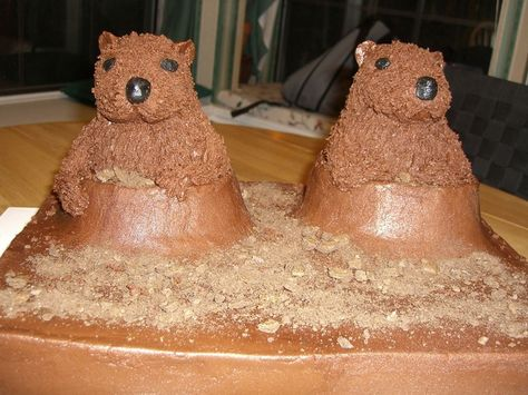 Groundhog Day Cake My groundhog's turned out pretty funny so I had to share.