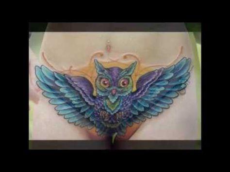 Com owl intim Owl Intim