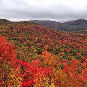 Image from userwiththatnamealreadyexists on 3 Oct 2018 with caption: My favorite color is October #adk #adirondacks #ispyny #pureadk #fall #autumn #foliage #mountains #hiking #leaves #wildernessculture #optoutside #meetthemoment #goatworthy #getoutside #goexplore #llbeancontest18 #beanoutsider #goeast #theoutbound #bpmag #findyouradventure #greettheoutdoors #modernoutdoors #earthpix #neverstopexploring #nylovesfall