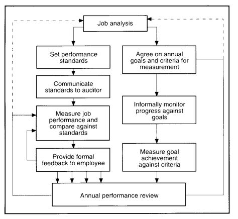 Examples  Employee Performance Appraisal And Review Evaluation