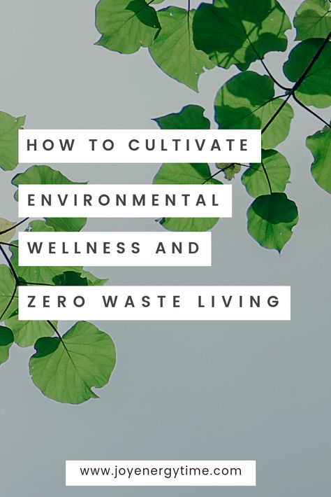 Ep 080: How to Cultivate Environmental Wellness and Zero Waste Living with Manuel Bergmann [Interview] - Joy Energy Time
