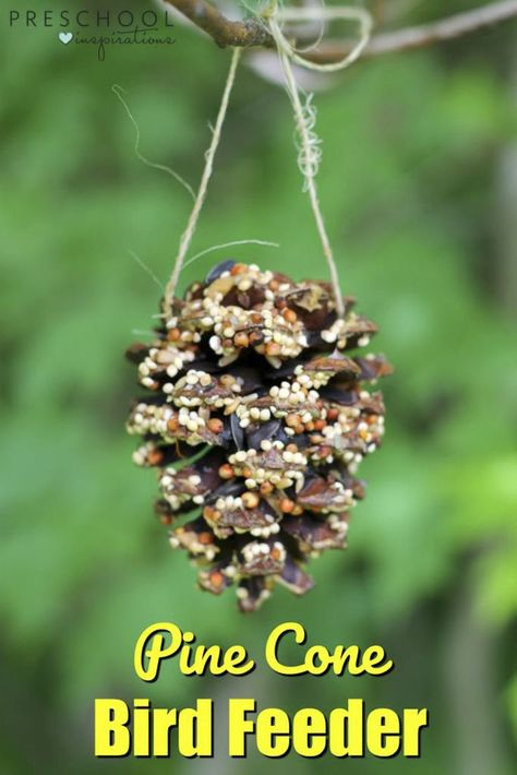 Make this simple pine cone bird feeder as a nature activity with children. #science #preschoolscience #nature #diy #gardens #projects #homemade
