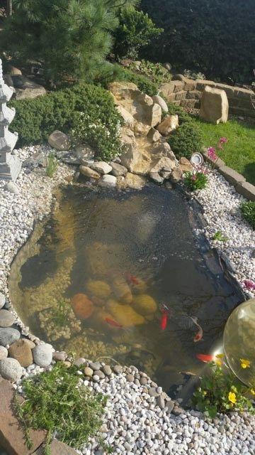 Teich Neugestaltung Fertigteich Neu Anlegen Teichanlage Neugestalten Teichschale Reinigen Teichschale Erneuern Teic Teichanlagen Fertigteich Teichbau