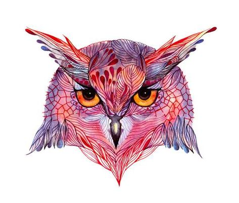 Illustration - illustration - Owl face // SALE 3 for 2 // Owla wild bird face water color art print, . illustration : – Picture : – Description Owl face // SALE 3 for 2 // Owla wild bird face water color art print, (No. via Etsy -Read More –