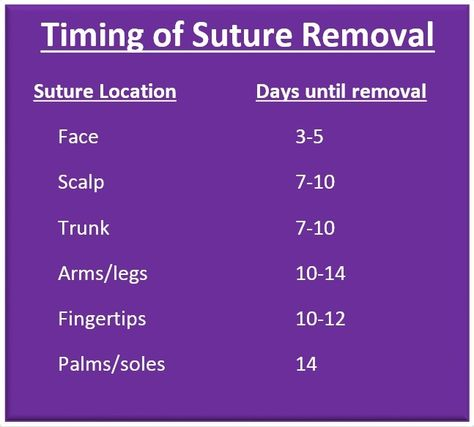 Surgical Staples Are Second Only to Super Glue for Speedy Wound Repairs!