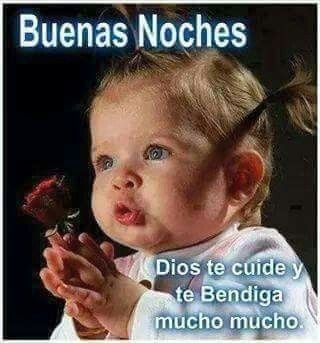 Pin By Maria Luna On Buenas Noches Memes Sarcastic Pictures Memes Funny Faces