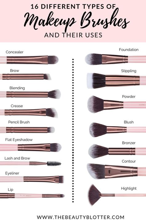 THE COMPLETE LIST OF MAKEUP BRUSHES AND THEIR USES | The Beauty Blotter