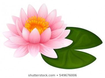 11 Clarifications On Lotus Flower Cartoon Lotus Flower Cartoon Www Flowernifty Cartoon Clarificati In 2020 Leaf Illustration Flower Illustration Flower Wallpaper