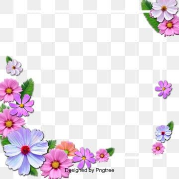 Hibiscus Flower Png Images In 2020 Flower Png Images Flower