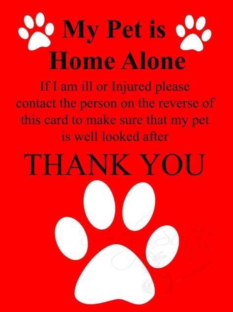 Pet Emergency Contact Pet Alert Cards Wallet Size 4 Cards Home Alone With Images Pet Emergency Dog Emergency Pets
