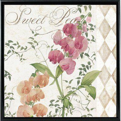 Sweet Pea Graphic Art Print Format