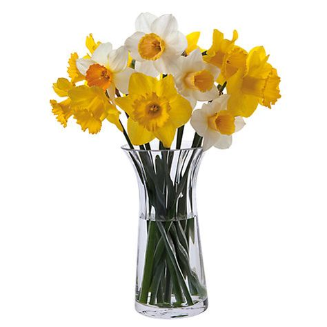 Florabundance Anemone Vase 26 Vases For Sale Vase Crystal Glassware