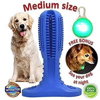 Dog Toothbrush Stick Dogs Teeth Cleaning Chew Toys Puppies Dental