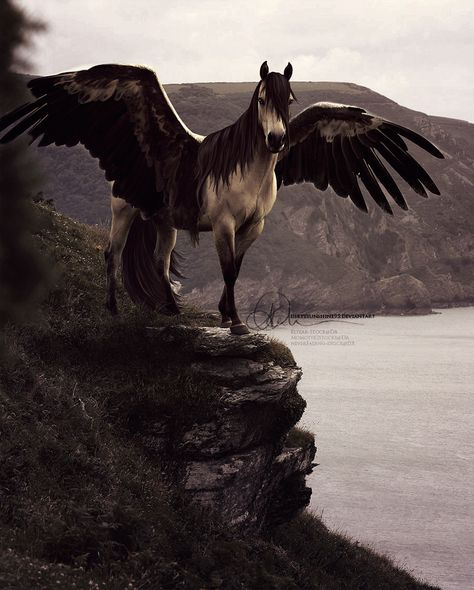 """Pegasus represented divine inspiration as well as god-like apotheosis. Anyone who rode him could become a great poet. Pegasus's crescent-moon-shaped hoof stamped the ground and dug the Hippocrene (Horse-Well), a spring of poetic inspiration on Mount Helicon, the home of the Muses. This was another kind of immortality: the rider of Pegasus could figuratively """"fly through the air to reach the heavens."""" Art titled """"Still Your Golden Boy"""" by DirtySunshine"""