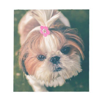 Lovely Foxy Dog Puppy Notepad Zazzle Com In 2021 Easiest Dogs To Train Training Your Dog Dog Grooming