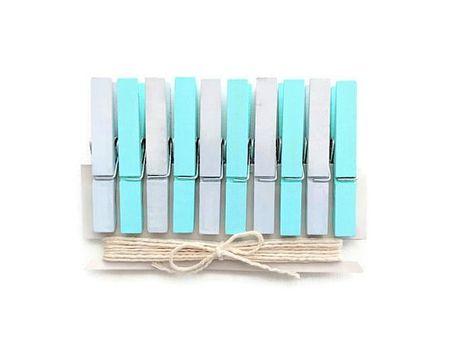 Mint Blue Gray Clothespins Decorative Clothespins Mini