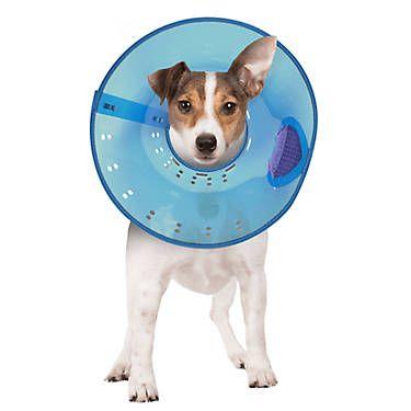 Calm Paws Behavior Support Trade Calming E Collar Your Dog