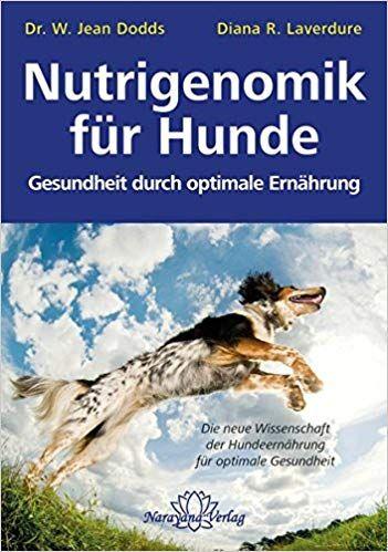 Nutrigenomik Fur Hunde Gesundheit Durch Optimale Ernahrung