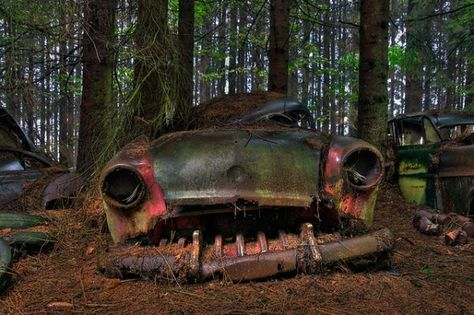 Abandoned Chatillon Car Cemetery (PHOTOS) When World War Two ended, departing American soldiers parked their cars in the forest near Chatillon, Belgium. Description from pinterest.com. I searched for this on bing.com/images