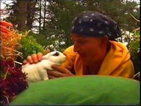 ▶ Mijn konijn - Ernst, Bobbie en de rest - YouTube